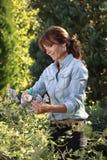 Schöne reife Frauengartenarbeit Stockfoto