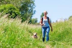 Reife Frau, die mit Hund in der Landschaft wandert Lizenzfreie Stockbilder