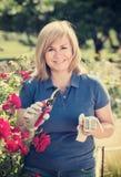 Reife Frau, die um roten Rosen sich kümmert Lizenzfreies Stockfoto