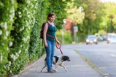 Reife Frau mit Bretagne-Hund auf einem Bürgersteig Lizenzfreies Stockbild