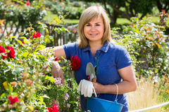 Reife Frau mit Werkzeugen im Garten Stockbild