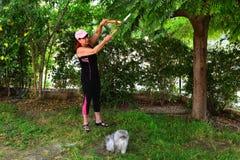 Reife Frau und eine Katze in einem Garten Stockbilder
