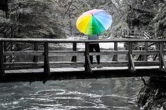 Reife Frauenstellung auf einer Holzbrücke über Fluss mit buntem Regenschirm an einem sonnigen Herbsttag stockfotografie