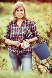 Reife Frauenwerkzeuge Stockfoto