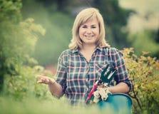 Reife Frauenwerkzeuge Lizenzfreie Stockfotos