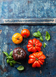 Reife frische bunte Tomaten Lizenzfreie Stockfotografie