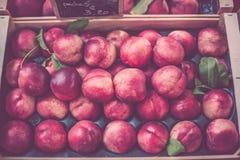 Reife frische Nektarinen in einem Landwirtmarkt Stockbilder