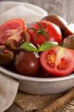 Reife frische Tomaten in einer Schüssel Lizenzfreies Stockfoto