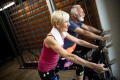 Reife geeignete Paare, die in der Turnhalle trainieren, um gesund zu bleiben lizenzfreies stockbild