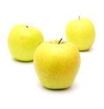 Reife gelbe Äpfel  Stockfoto