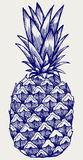 Reife geschmackvolle Ananas Lizenzfreie Stockfotografie