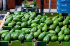 Reife grüne Avocados Lizenzfreie Stockbilder