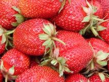Reife, große und sehr süße Erdbeere lizenzfreie stockbilder