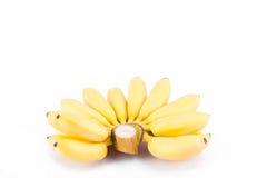 Reife Hand von goldenen Bananen oder Banane Dame Finger auf weißer Hintergrund dem gesunden Fruchtlebensmittel Pisang Mas Banana  Lizenzfreies Stockfoto