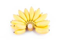 Reife Hand von goldenen Bananen oder Banane Dame Finger auf weißer Hintergrund dem gesunden Fruchtlebensmittel Pisang Mas Banana  Stockfotografie