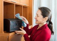Reife Hausfrau, die zu Hause säubert Stockbild