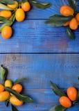 Reife japanische Orangen mit Blättern gestalten Kopienraum lizenzfreie stockbilder