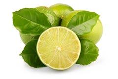 Reife Kalkfrüchte mit den Grünblättern getrennt stockbilder