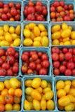 Reife, Kirsch- und Traubentomaten Lizenzfreies Stockbild