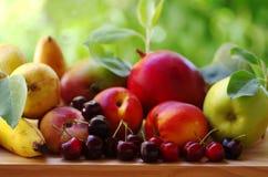 Reife Kirschen und sortierte Früchte Stockbild