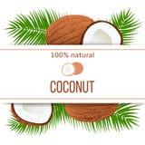 Reife Kokosnüsse und Palmblätter mit dem Text 100 Prozent natürlich ganz und gebrochen Stockbilder