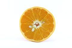 Reife Mandarinen-Zitrusfrucht lokalisierte Tangerine-Mandarine auf weißem Hintergrund stockfoto