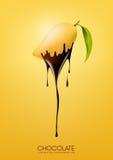 Reife Mango tauchte ein, wenn sie dunkle Schokolade, Frucht, das Fonduerezeptkonzept schmolz, transparent, Vektorillustration Stockfoto