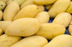 Reife Mangofrüchte Lizenzfreie Stockbilder
