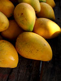 Reife Mangofrüchte lizenzfreie stockfotografie