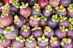 Reife Mangostanfrüchte Lizenzfreie Stockfotografie
