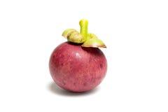 Reife Mangostanfruchtfrucht Lizenzfreies Stockfoto