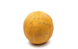 Reife Melone lokalisiert lizenzfreie stockfotografie