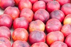 Reife Nektarinen für Verkauf am Gemüsemarkt im Sommer Lizenzfreies Stockbild