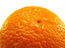 Reife Orange Lizenzfreies Stockfoto