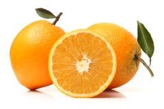 Reife Orange stockfotos