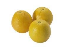 Reife Orange auf weißem Hintergrund Stockfoto