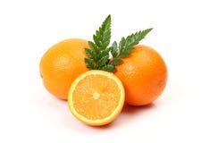 Reife Orangen Stockfoto