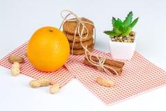 Reife Orangen, Erdnüsse, Hafermehlplätzchen und Aloe Stockfoto