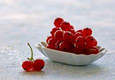Reife organische frische rote Johannisbeerfrüchte lizenzfreies stockbild