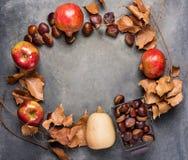 Reife organische rote glatte Apfel-Granatapfel-Kastanien im Weidenkorb trocknen Autumn Leaves Arranged im Kreis auf dunklem Hinte Lizenzfreie Stockfotografie