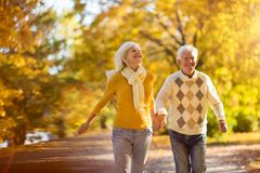 Reife Paare, die in Herbstpark laufen stockfotos