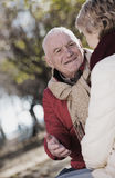 Reife Paare, die im Park sprechen stockfoto