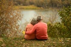 Reife Paare, die nahe See sitzen Stockbild