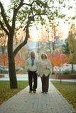Reife Paare im Herbstpark Stockfoto
