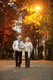 Reife Paare im Herbstpark Lizenzfreies Stockbild