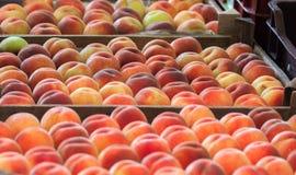 Reife Pfirsiche in einem Kasten auf einem Obstmarkt Stockfotografie