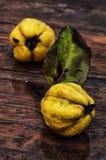 Reife Quittenfrucht Stockbilder