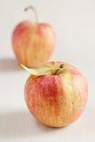 Reife rote Äpfel lizenzfreies stockfoto