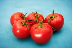 Reife rote Tomaten auf blauem Hintergrund Stockfoto