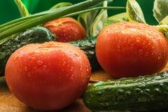 Reife rote Tomaten, grüne Gurken, Frühlingszwiebelfedern werden mit großen Wassertropfen bedeckt Stockbilder